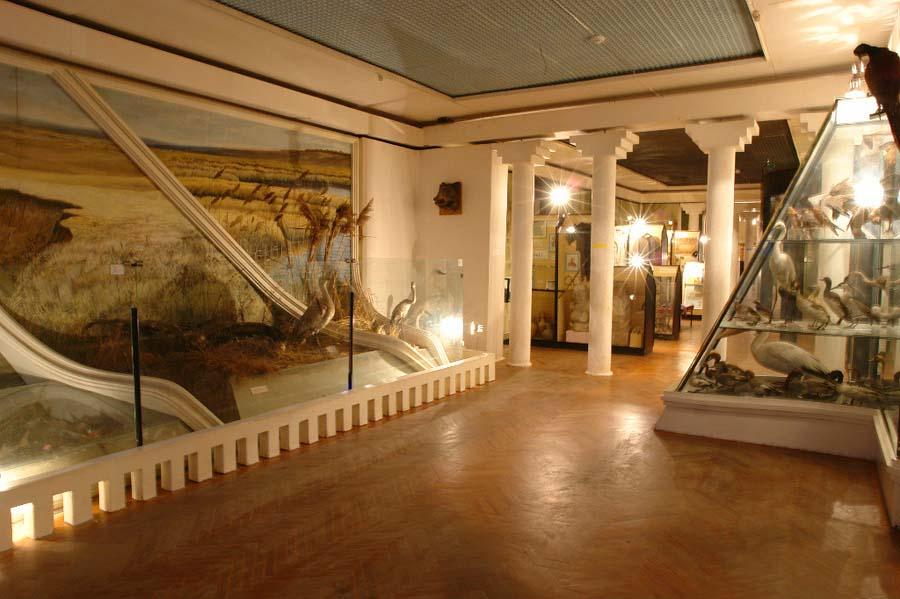 краеведческий музей Ейска