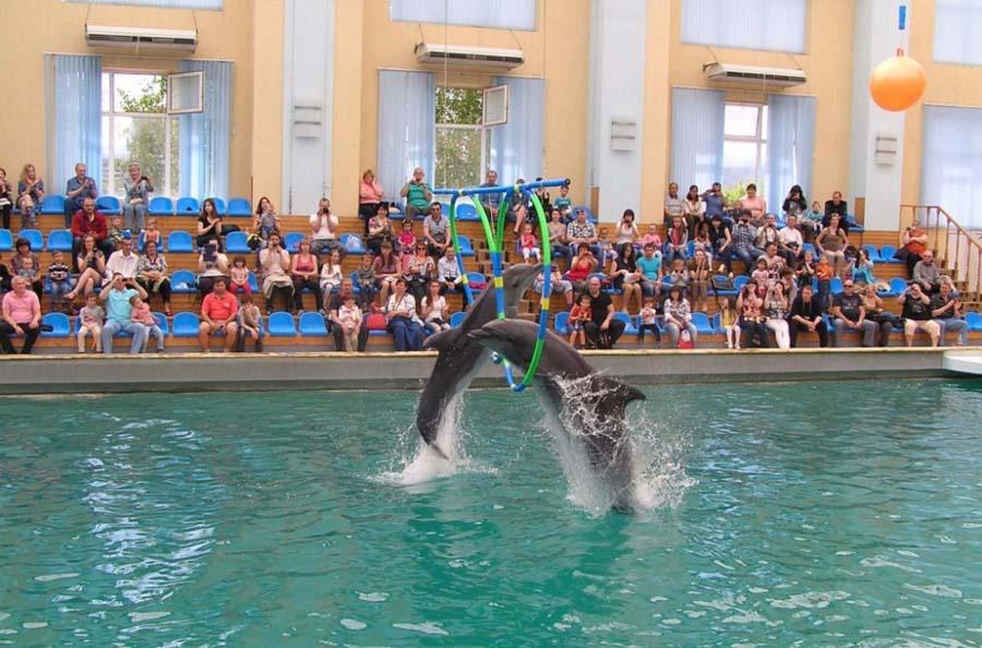 Кисловодский дельфинарий