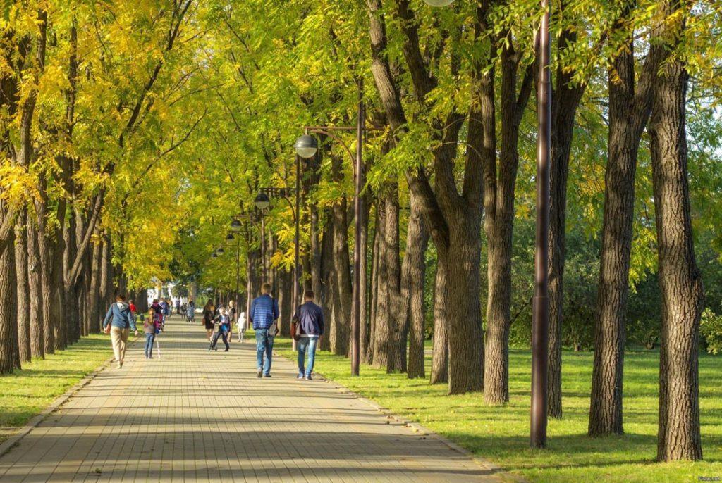 Ботанический сад имени И. С. Косенко