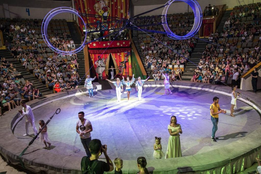 Краснодарский цирк
