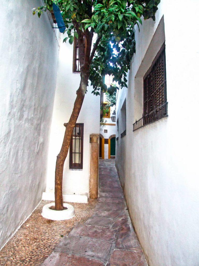 Улица носового платка (Calleja del Panuelo)