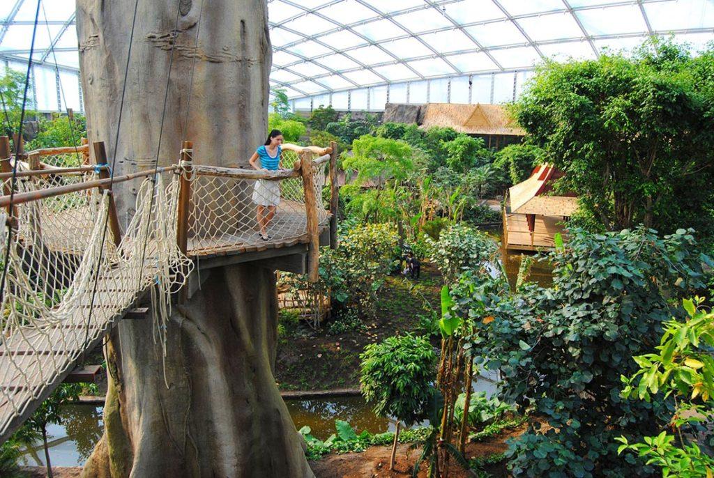 Зоопарк внутри